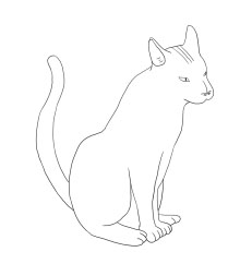 cat_04 copy